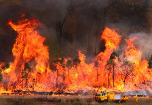 Bushfires Trc Tablelands Regional Council